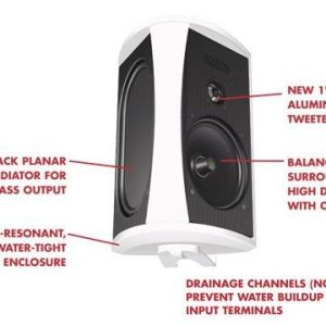 Definitive Technology AW6500 Indoor Outdoor Speaker – Each